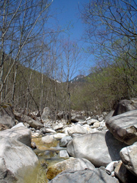 200505azumino-river