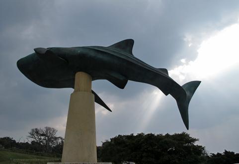 2012okinawa05
